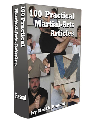 100 martial arts articles