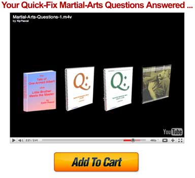 quick fix martial arts questions and knockdown punches