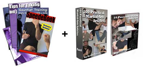 speed ebook, gauntlet drills, taking on a boxer, 100 martial arts articles, pressure points