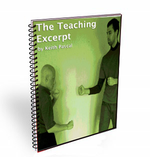 teach martial arts download excerpt