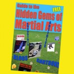 Free Guide to The Hidden Gems of Martial Arts